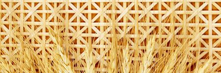 bamboo texture: wheat and bamboo texture background