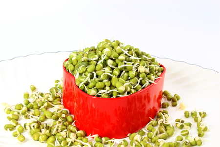fresh Sprouted mung beans or green gram beans in heart container