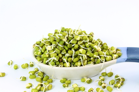 fresh Sprouted mung beans or green gram beans in spoon Stock Photo