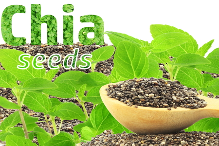chia seeds Salvia hispanica with plant with text and copy space Stock Photo