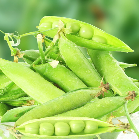 bluer: fresh green pea pods and peas on the bluer background Stock Photo