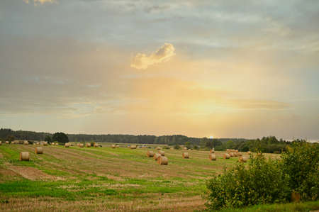 Photo of a field and haystacks. The picture was taken in autumn at sunset
