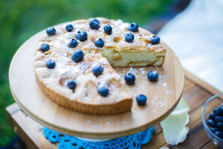 Blueberry cake set on a picnic table