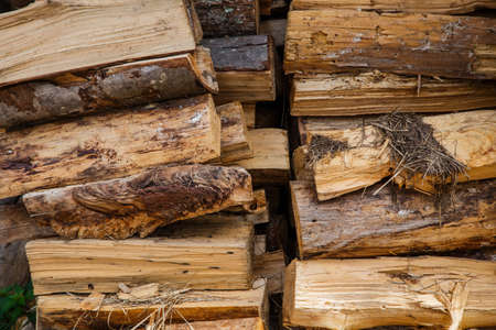 Stack of firewood for winter Stok Fotoğraf