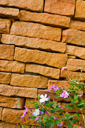 this brick wall made by man and the flower by nature create a good diversity. The wall is nearly collapse photo