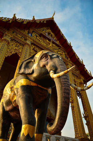 Elephant In The Temple Religious Symbol Stock Photo Picture And