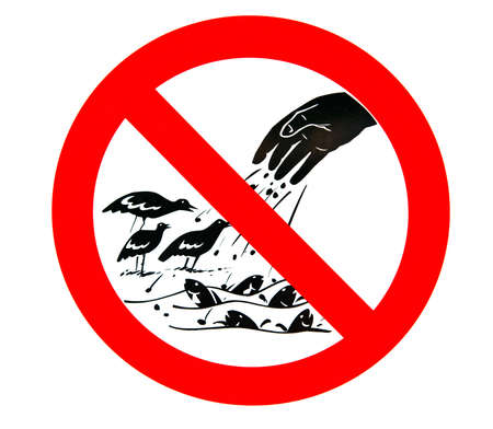 No feeding sign  Don t feed the birds and fishes  photo