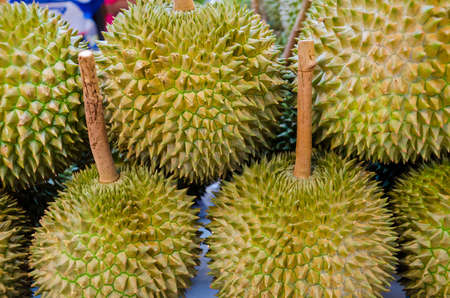 Durian (tropical fruit) on sales in the market of Thailand photo