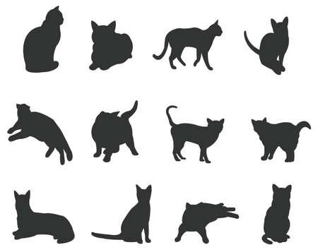 silhouette gatto: Set di gatti silhouette, in varie azioni, creare un vettore