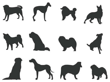 Sets of silhouette dog, in various species, create by vector Vector