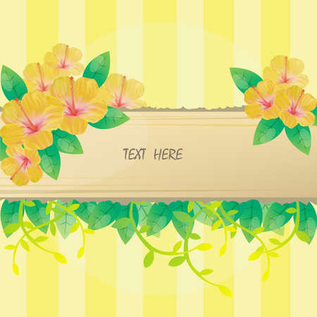 Hibiscus Flower yellow background and notepad for everyone to use.  Vector