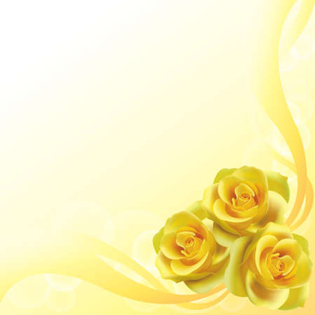 Yellow roses background, create by vector Vector