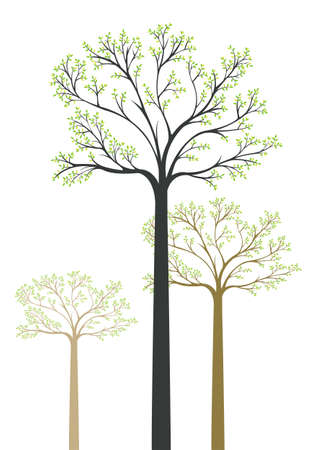 tall tree: Artistic wood with 3 trees Illustration