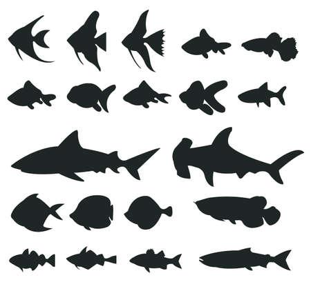 tiburones: Juegos de 1 Peces silueta, crear por vector