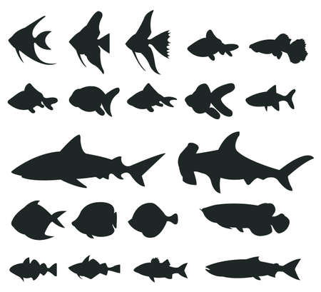 Sets of silhouette Fishes 1, create by vector