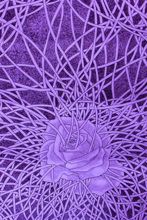 confine: Purple rose bondage drawing concept Stock Photo