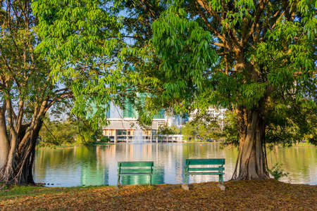 riverside trees: Riverside Resting place with 2 benches between the trees