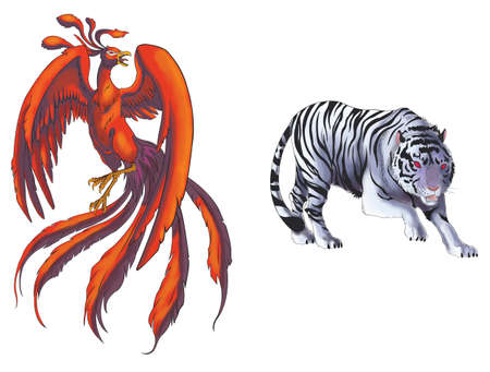 mythical phoenix bird: 4 Chinese mythical creature gods (Shijin) set 1 - Tiger and Phoenix. Create by vector