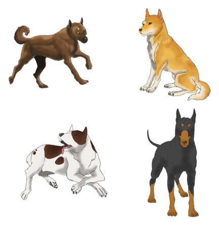 Sets of illustration dog in four various species, create by vector Vector