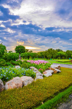 Dreamy park in Thailand, with beautiful flowers and sunset with illutionary scene photo