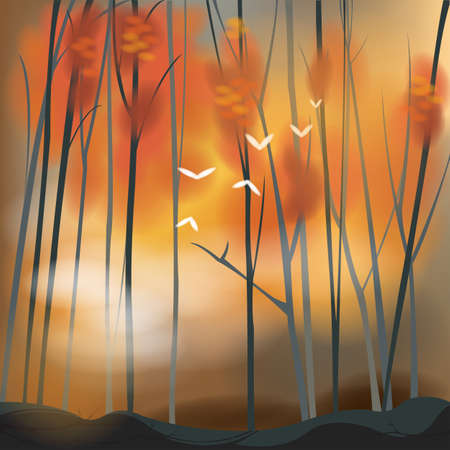 Barren forest background in autumn sunset scene. Vector
