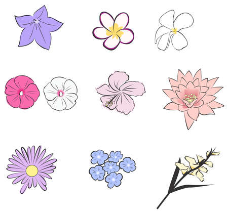 gladiolus: Simple tropical flower icon collection set