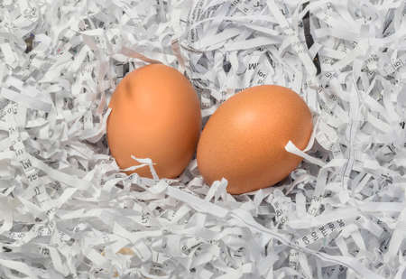Two eggs in the pile of torn paper bits background photo