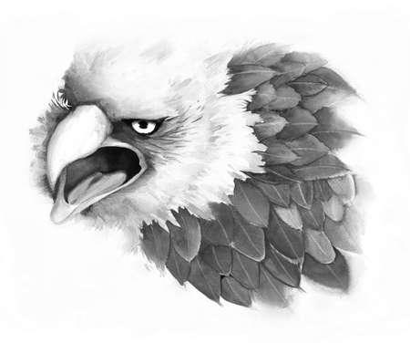 An illustration of fantasy eagle, done by pencil sketch illustration