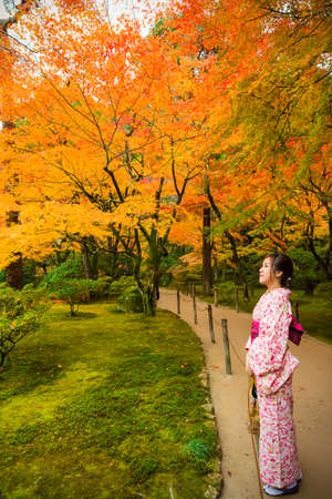 japanese kimono: Cute Japanese girl is standing calmly in autumn wilderness landscape