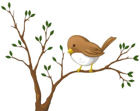 bird nightingale: Cute little Nightingale bird on the branch of the tree Illustration