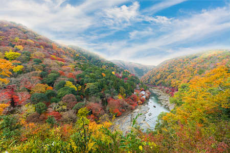 Beautiful valley with seasonal colorful trees and blue sky landscape in Japan Standard-Bild