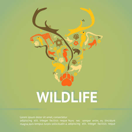 hornbill: Wildlife animal infographic template layout badge background for education or advertising campaign in antler deer shape icon with sample text, create by vector