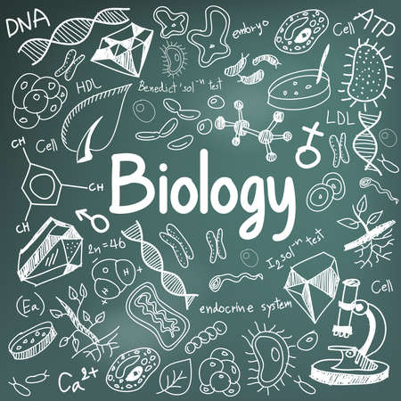 bio: Biology science theory doodle handwriting and tool model icon in blackboard background used for school education and document decoration, create by vector
