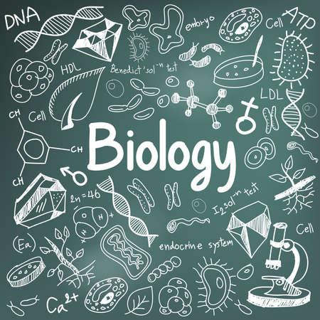 la théorie de la science de la biologie doodle écriture et le modèle d'outil icône en arrière-plan, tableau noir utilisé pour l'enseignement scolaire et le document décoration, créer par le vecteur