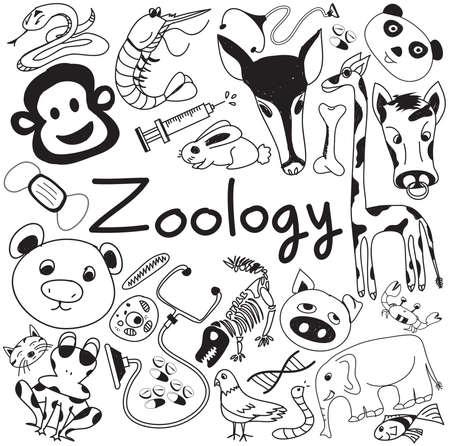 Zoología iconos de la biología del doodle de escritura a mano de las especies animales y herramientas de educación en blanco aislado fondo de papel para la presentación de la ciencia o título del tema, crear por el vector