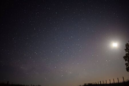 playing with the stars