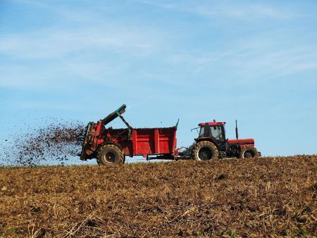 Agriculture - Topdressing with manure Stock Photo