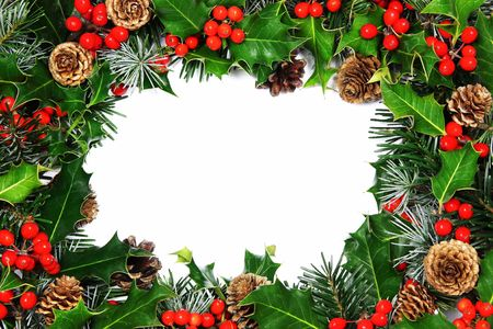 A tradional Christmas holly border of natural holly, cypress, pine and cones on a white background with very soft natural shadow.