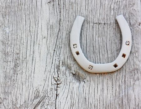 Grunge Horse Shoe on a painted barn door photo