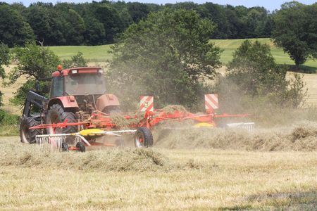 rotational: A rotational hay rake in use to form lines of dried grass to make hay bales