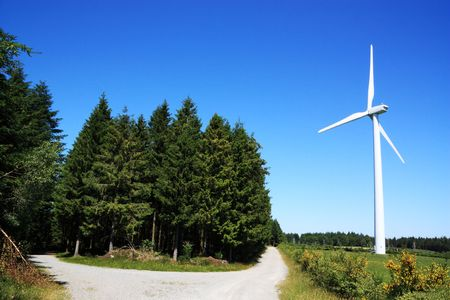 The concept of renewable or sustainable energy with timber plantations and a wind turbine photo