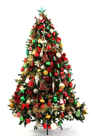 coniferous tree: Red, Green and Gold decorations in a series of colour themed Christmas trees  photographed over white with soft shadow at the base Stock Photo