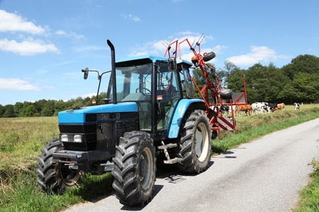 road tractor: A tractor with a rotary hay rake is parked on a rural road with cattle behind. Stock Photo