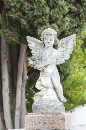 Little stone angel on a tomb or grave  in a churchyard against greenery. Spiritual remembrance or memorial. Close up on the angel 스톡 콘텐츠