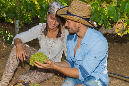 winemaker: Young couple, vine growers, enjoy eating grapes while seated on the ground under the vines.