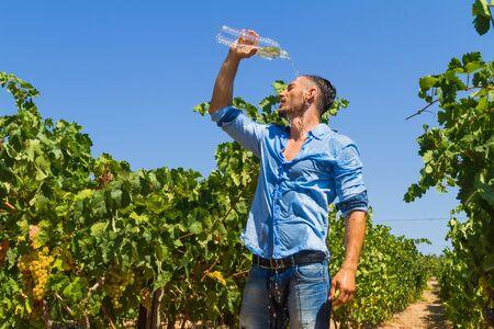 joven agricultor: Calor agotado joven agricultor en la vi�a, poors una botella de agua en la cabeza para refrescarse apagado.