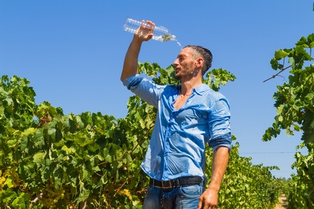 cool off: Heat exhausted young farmer in vineyard, poors a bottle of water on his head to cool himself off. Stock Photo