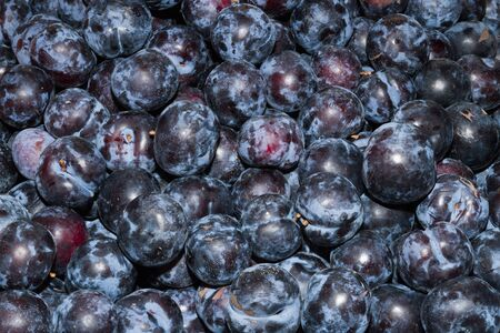 super fruit: High energy food, health booster juicy ripe plums super fruit on an open air fruit market bazaar.