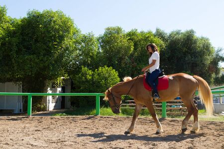 horse sleigh: Young brunette and her best friend brown-blond purebred mare in the riding club