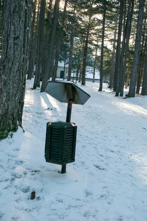 segregate: waste basket on a tree in the woods